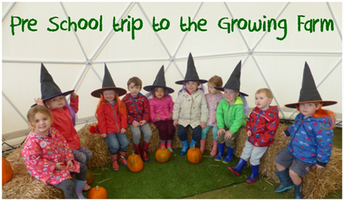 The Spinney pre-school visit at Pumpkin growing farm