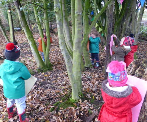 The Spinney Hoole forest session