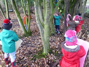 The Spinney Hoole Forest School